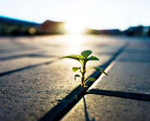 Hoffnung ist eine starke Ressource